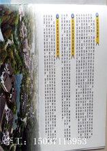 阿鲁科尔沁旗立项报告、代写立项报告的公司图片