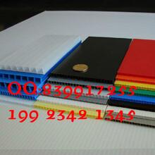 绵阳中空板PP塑料中空板瓦楞板重庆厂家直销高品质图片