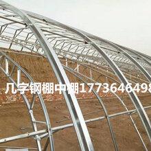 双膜大棚骨架符合建造养殖大棚的条件