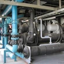 長興廢舊中央空調回收長興區域雙良溴化鋰冷水機組回收圖片