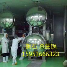电加热食品杀菌锅蒸汽水浴式杀菌设备高温高压调理设备