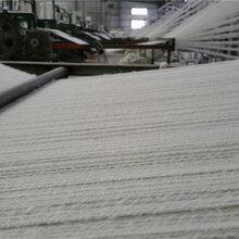 石棉布有几种长度_浙江无尘石棉布厂家直销图片