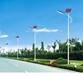 諸暨市太陽能景觀照明燈廠家