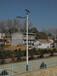 泉州市豐澤區8米路燈廠家價格太陽能金豆款