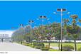 泉州市豐澤區6米8米市電路燈價格哪買
