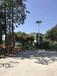 寧夏回族自治銀川7米8米太陽能路燈價格廠家貨到當地多少錢