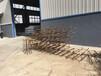 寧夏回族自治石嘴山6米太陽能路燈價格廠家多少錢一整套