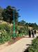 麗水蓮都區8米路燈價格太陽能月度評述
