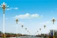霞浦县6米10米道路路灯多少钱,供货商