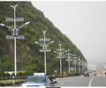 四川阿坝太阳能路灯5米6米大概多少钱市场分析价格