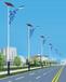 泉州鲤城新农村路灯太阳能的造价批发