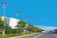 青海海南8米大众款太阳能路灯批发商