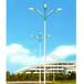 泰安LED路灯价格农村道路安装泰安路灯厂家定制加工