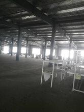 芜湖镜湖太阳能杀虫灯价格推荐