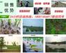邵武市小龙虾苗养殖专业合作