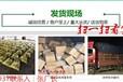 贛州蚯蚓種苗價格/基地直銷