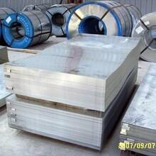 云南鍍鋅板鍍鋅板價格_優質鍍鋅板批發/采購商機圖片
