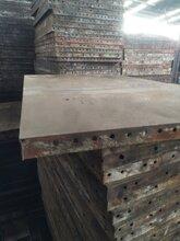 云南鋼模板模板/昆明模板價格/廠家直銷圖片