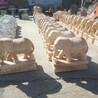 石象石雕汉白玉晚霞红招财进宝镇宅汉白玉晚霞红大象