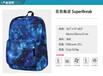 上海定制學生書包雙肩背包旅行包來圖定做可添加logo