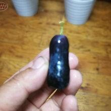 我的道葡萄树苗现货、钦州贝达葡萄苗种植技术