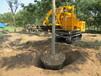 种植机械带土球挖树机挖大树价格