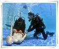 潜水打捞、污泥固化压滤脱水成都联系电话