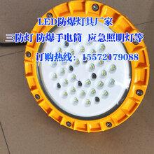 户外led泛光灯30W40W50W60W80W弯杆防爆投光灯工业照明灯具