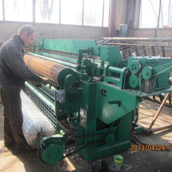 2米高绿色铁丝网菜园子围栏电焊网机荷兰网机