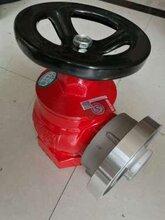 消火栓室内消火栓SN65室内消火栓消防栓DN65-1.6室内栓图片