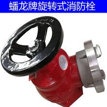 室内消火栓DN65旋转消火栓潘龙室内消防栓减压消火栓消防龙头图片
