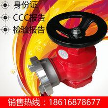 室内消火栓DN65消防栓英制消火栓消防龙头CCC认证消火栓金盾喷头图片