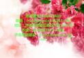 鮮花網站諾商信息10年品牌_鮮花網站定制圖片