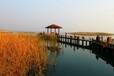 太湖上景花園太湖濕地公園北側疊墅總價400萬