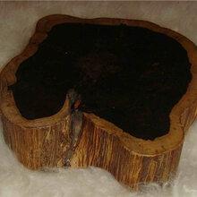哪家公司能拍卖黑檀木