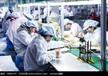 上海各種化妝品代加工廠