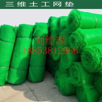 三维植被网三维网垫护坡网三维土工网垫