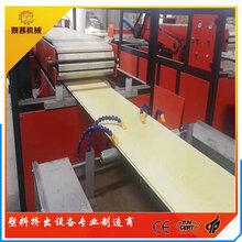 木塑发泡护墙板设备PVC木塑墙板生产设备