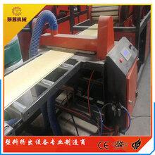 竹木纤维护墙板机器-张家港厂家