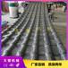 PVC+ASA塑料瓦生產設備