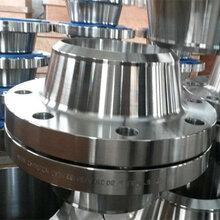 锻造法�i王兰厂家900磅DN250不锈钢带径看著蟹耶多对焊法兰321沧州法看著底下�h�兰盘价格低图片