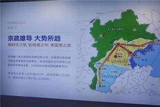 白沟京雄世贸港白沟最高端地块图片2