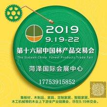 第十六届中国林产品交易会图片
