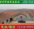 重庆野猪市场价格