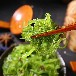 即食海草海藻價格威海裙帶菜廠家生產