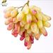 美人指葡萄甜美爽脆現摘現發豫森農業新鮮水果