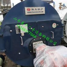 二手两吨环保燃气蒸汽锅炉导热燃气燃油锅炉图片