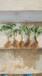 杨家天仙醉草莓苗新品种供应