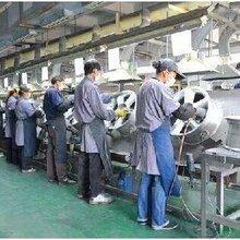 青岛劳务公司提供青岛企业劳务派遣临时工