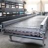 厂家生产不锈钢链板输送机果蔬清洗输送机酸豆角输送机